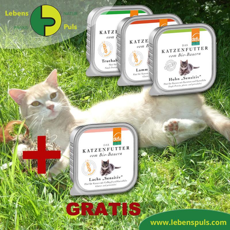 BIO Nassfutter für Katzen